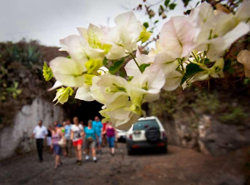 Teneriffa-Exquisit Komfort Tour Masca und Teide