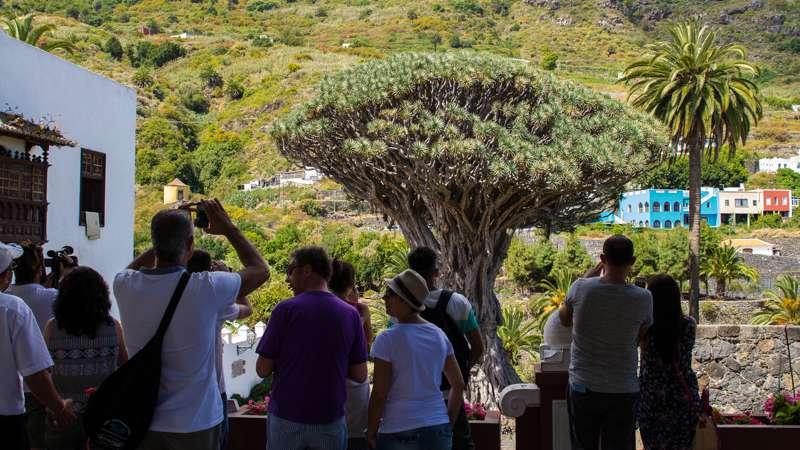 Komfort Tour Masca und Teide 002