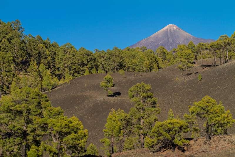 Komfort Tour Masca und Teide 004