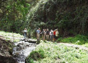 Teneriffa-Exquisit Wandern La Gomera Tour