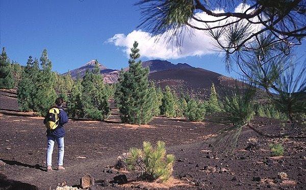 Teneriffa Dienstag Wandertour Drei Vulkane